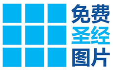 New Chinese logo